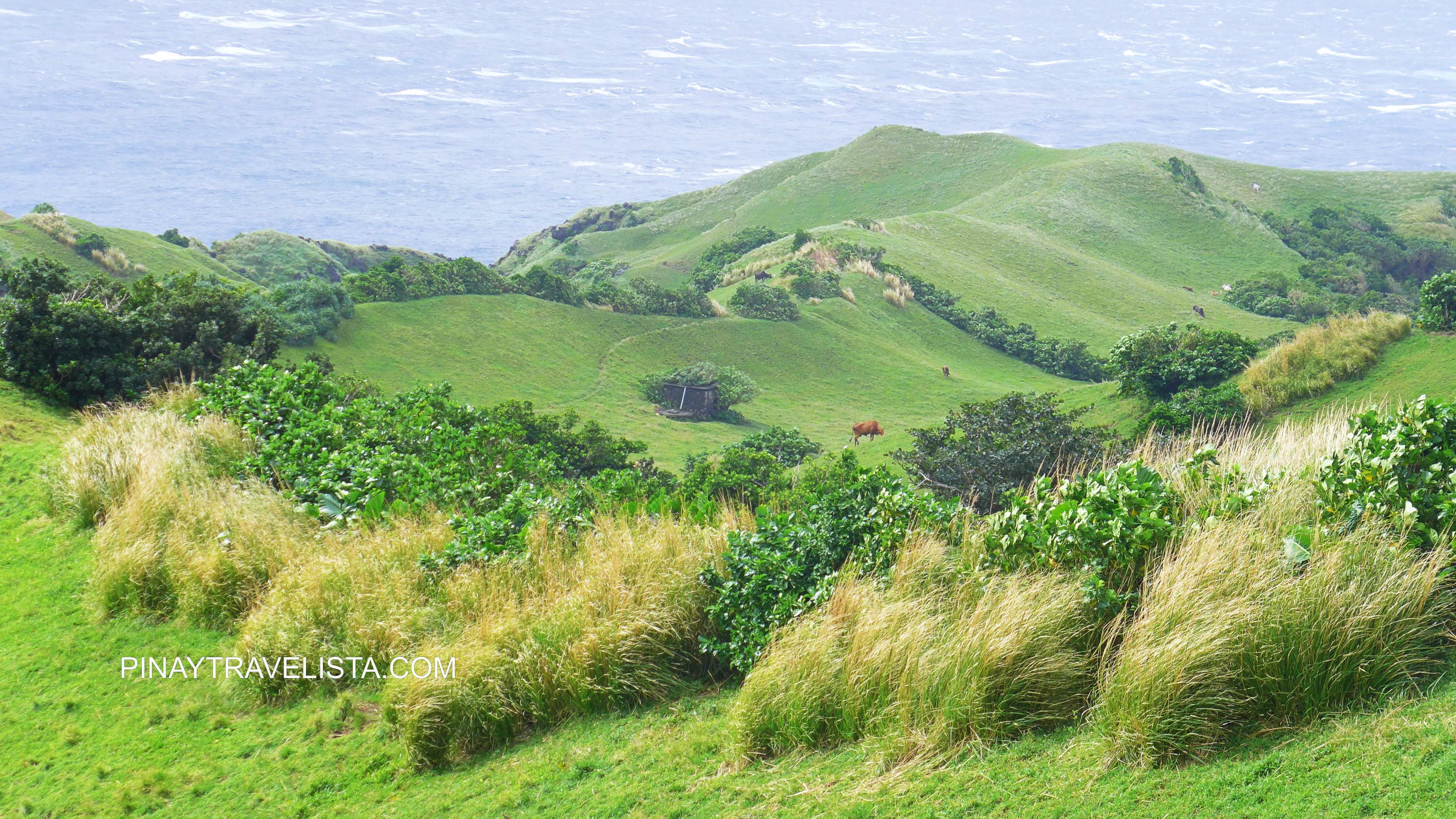 BATANES TRAVEL GUIDE | How To Get There, Things to to Do, & Where to Stay